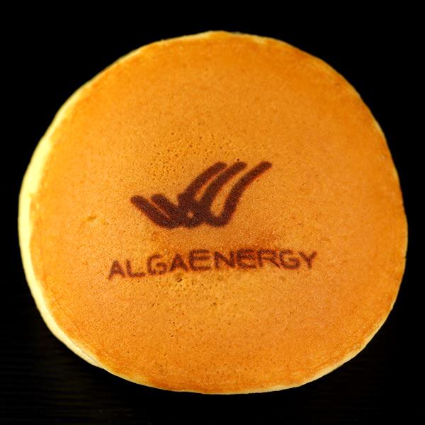 【法人事例42】AlgaEnergy様
